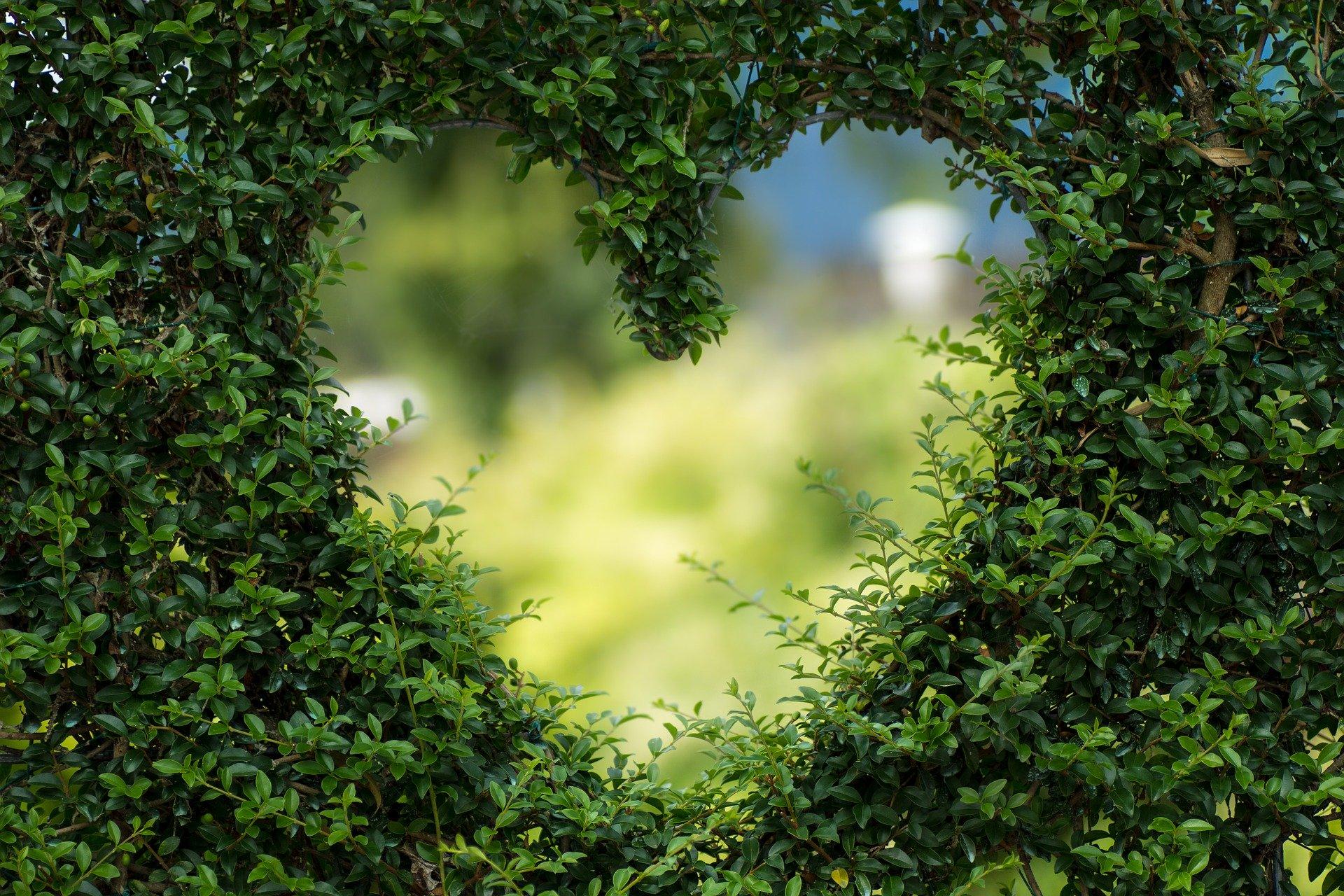 Любовта е единствената сила, която пресича ограниченията
