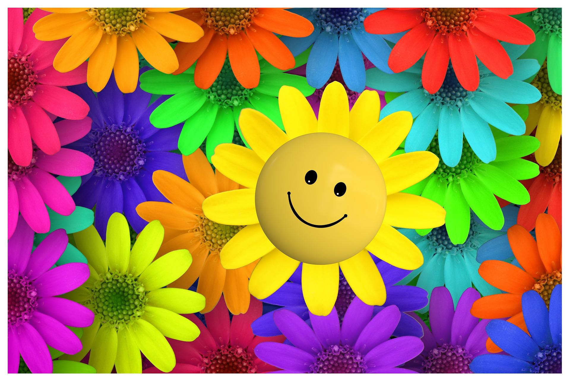 10 усмивки за всеки ден