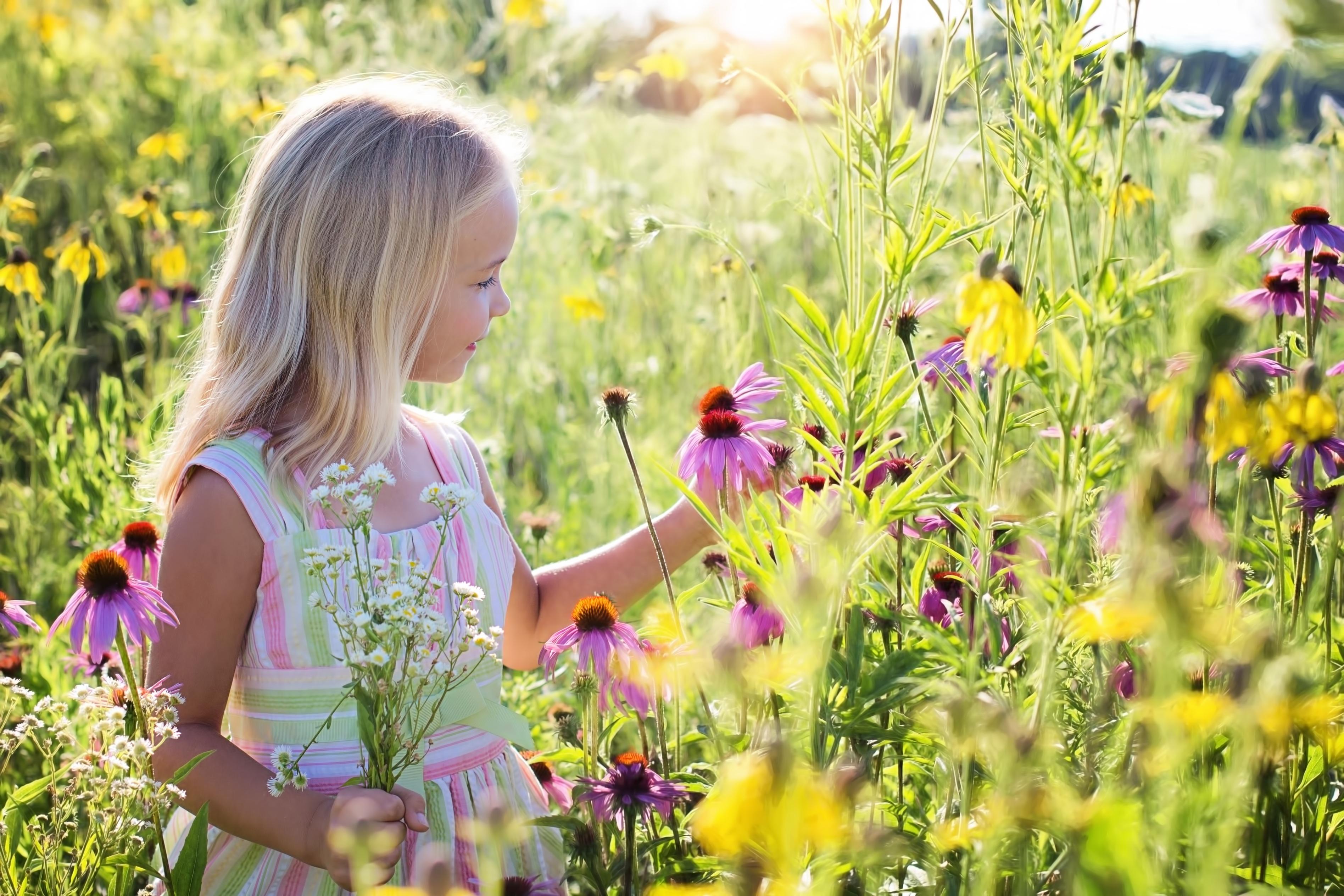 Плодът на Живота са децата, а не нивята