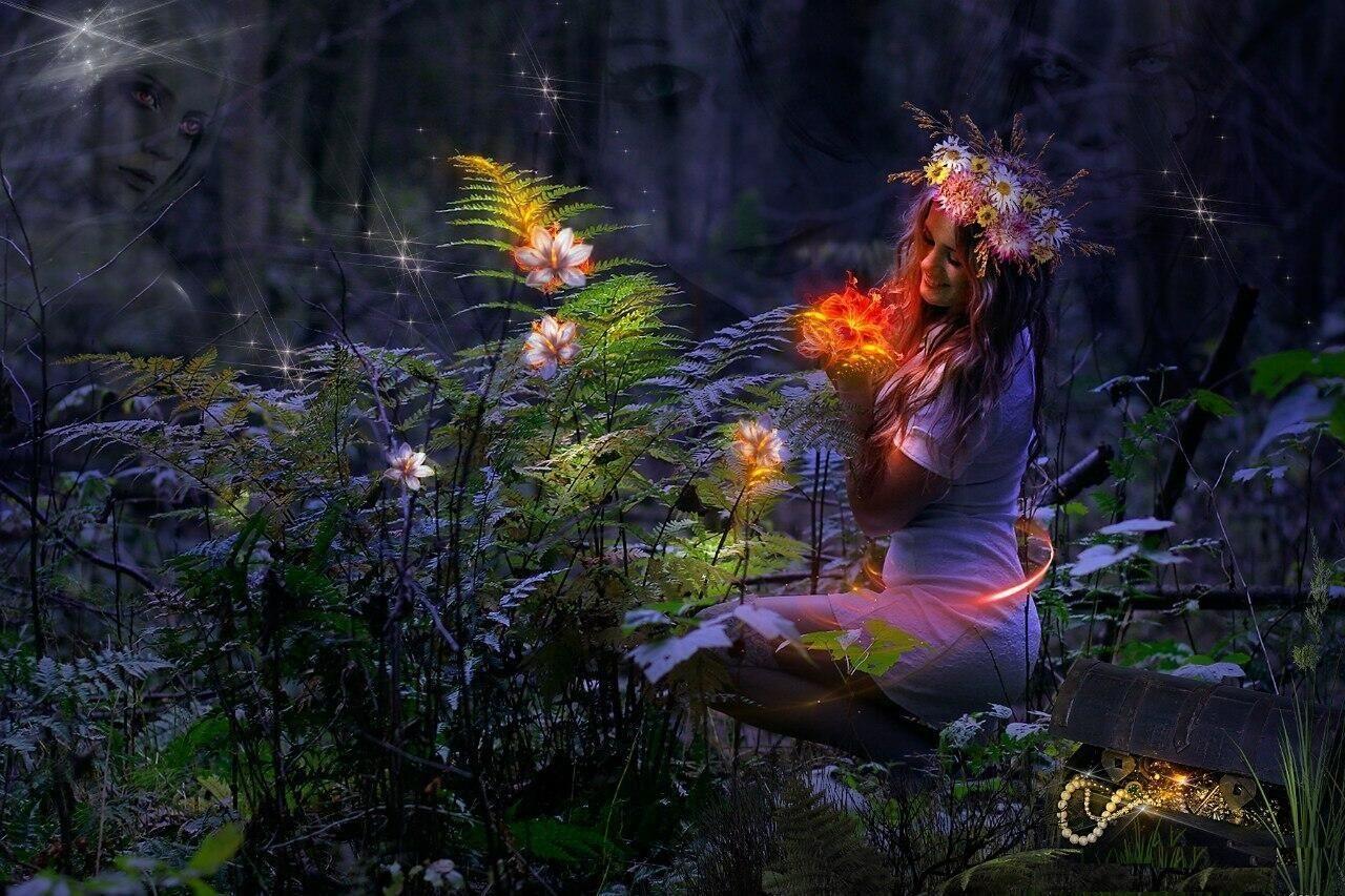 Период Высокого Солнца или когда празднуется Ночь Ивана Купалы. Нужно ли идти в лес искать папоротник?